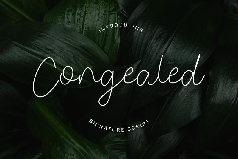 Congealed Signature