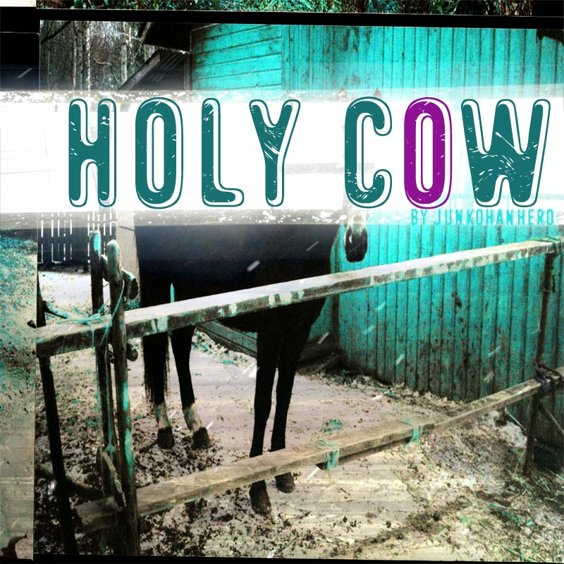 Holy Cow